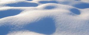 white_snow