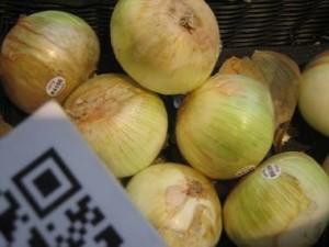 Onions-Texas-1015